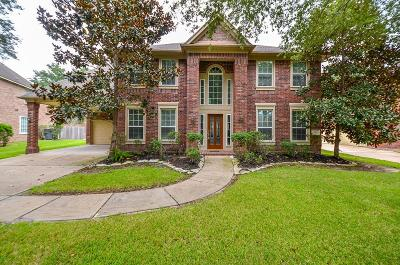 Sugar Land Single Family Home For Sale: 2011 Claire Court