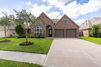 Shadow Creek Ranch Single Family Home For Sale: 2421 Lost Bridge Lane