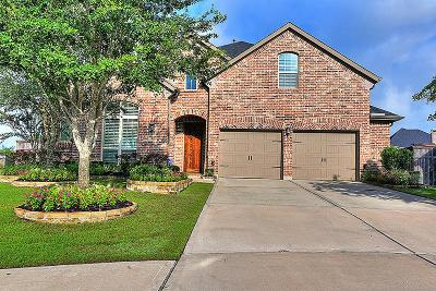 Fulshear Single Family Home For Sale: 5831 Trinity Bluff Court