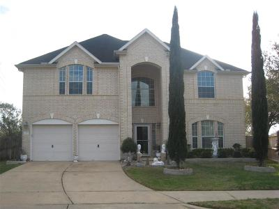 Manvel Single Family Home For Sale: 3702 Raven Ct