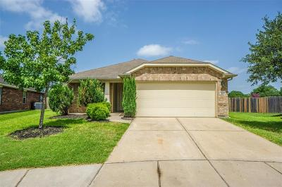 Tomball Single Family Home For Sale: 20419 Horsetail Falls Drive