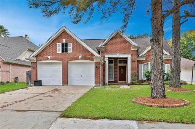 Houston Single Family Home For Sale: 7314 Stone Valley Drive