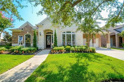 Katy Single Family Home For Sale: 25611 Wildbrook Xing Lane