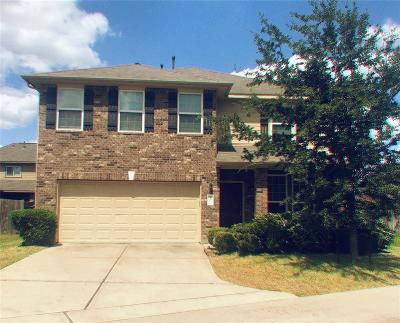Katy Single Family Home For Sale: 25006 Tancy Ranch Court