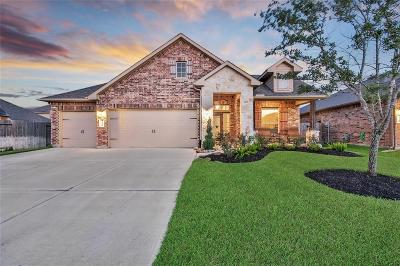 Katy Single Family Home For Sale: 23311 Verona View Lane