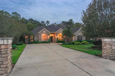 Montgomery County Single Family Home For Sale: 32514 Riverwood Drive