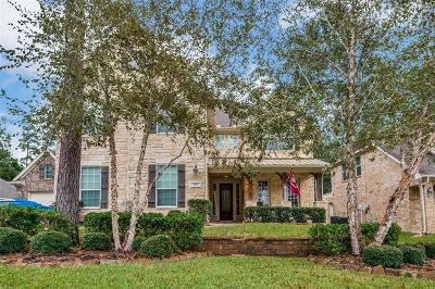 Conroe Single Family Home For Sale: 2537 Eagle Post Drive