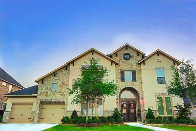 Katy Single Family Home For Sale: 1715 Rice Mill Drive