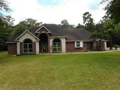 Single Family Home For Sale: 22101 Big River Drive
