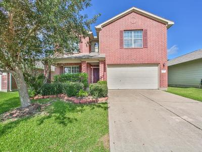 Katy Single Family Home For Sale: 4123 Mt Whitney Way