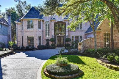 The Woodlands Single Family Home For Sale: 14 Shearwater Place