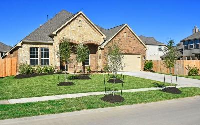 Rosenberg Single Family Home For Sale: 7407 Dry Stone Lane