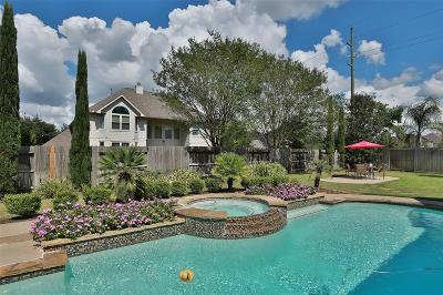 Katy Single Family Home For Sale: 7206 Fountain Meadow