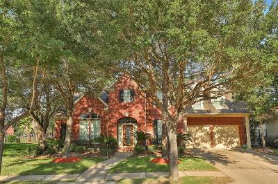 Houston Single Family Home For Sale: 11514 Stoney Falls Drive W