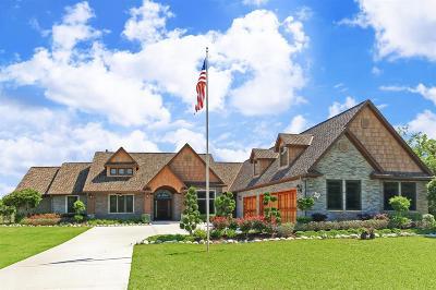 Alvin Single Family Home For Sale: 2903 Megan Lynn Lane