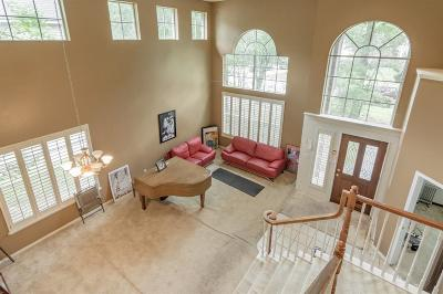 Single Family Home For Sale: 45 S Piney Plains Circle