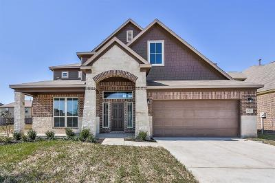 Montgomery County Single Family Home For Sale: 16811 West Whimbrel Circle