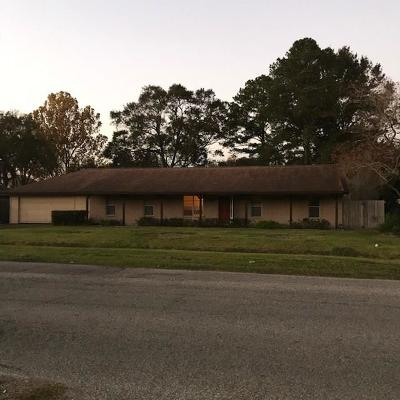 Pearland Single Family Home For Sale: 4809 Scott Road