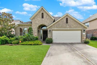 Conroe Single Family Home For Sale: 407 Oak Stream Drive