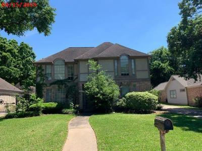 Houston Single Family Home For Sale: 6515 Castle Lane Drive