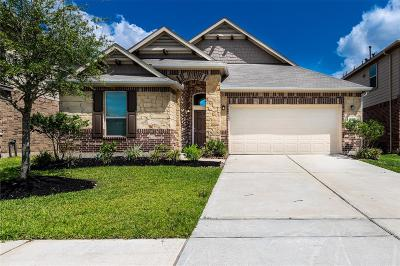 Katy Single Family Home For Sale: 2714 Rice Mill Avenue