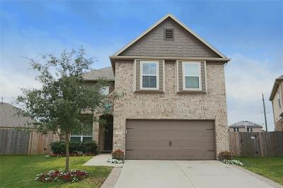Tomball Single Family Home For Sale: 10615 Blithe Oak Court