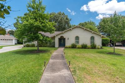 Houston Single Family Home For Sale: 1610 Antigua Lane