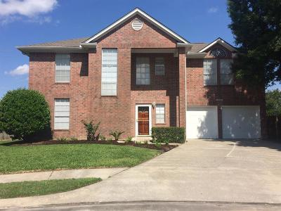 Single Family Home For Sale: 16002 Copper Canyon Drive
