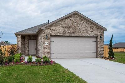 Houston Single Family Home For Sale: 6417 Hollock Meadows Lane