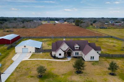 Alvin Single Family Home For Sale: 1153 County Road 150