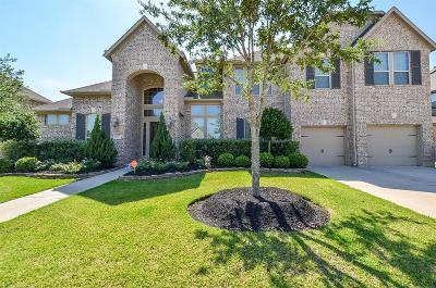 Cypress Single Family Home For Sale: 16707 S Azure Mist Court