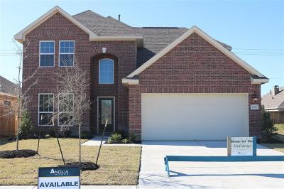 Baytown Single Family Home For Sale: 6515 Hidden Dunes