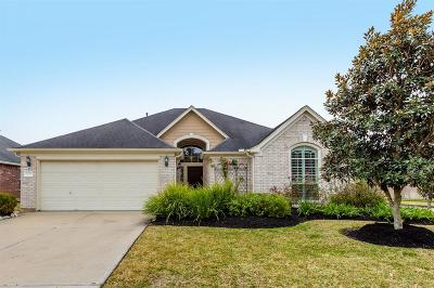 Manvel Single Family Home For Sale: 3719 Pecan Court