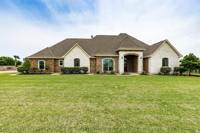 Baytown Single Family Home For Sale: 6334 Fisher Reef Drive