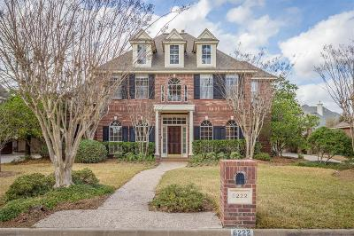 Spring Single Family Home For Sale: 6222 Laver Love Drive