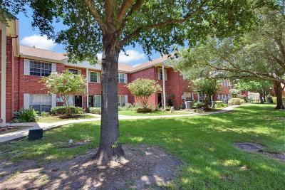 Harris County Condo/Townhouse For Sale: 13652 Garden Grove Court #245