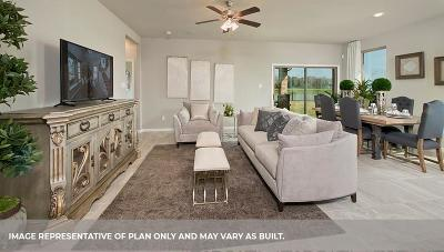 League City Single Family Home For Sale: 6415 Firewood Drive