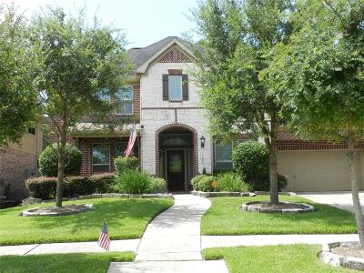 Houston Single Family Home For Sale: 13610 Elm Shores Drive