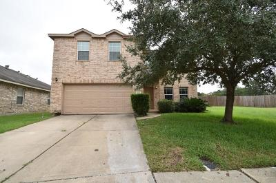 Tomball Single Family Home For Sale: 20006 Mammoth Falls Drive