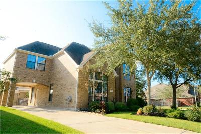 Sugar Land Single Family Home For Sale: 2202 E Black Oak Drive