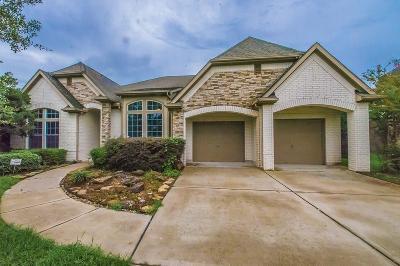 League City Single Family Home For Sale: 113 Lake Bridge Lane