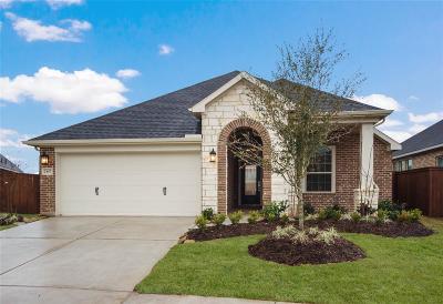 Cane Island Single Family Home For Sale: 2407 Elmwood Trail