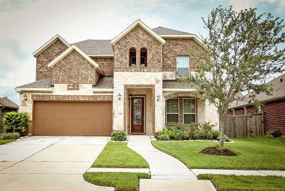 Pearland Single Family Home For Sale: 1910 Winter Creek Lane