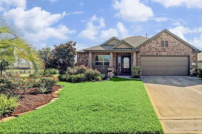 Tomball Single Family Home For Sale: 25206 Saddlebrook Champion Way