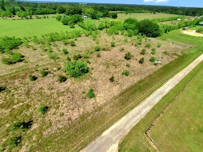 Tomball Residential Lots & Land For Sale: 13845 Boudreaux B