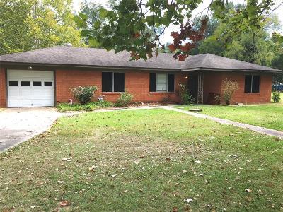 Shepherd Single Family Home For Sale: 11181 Main Street