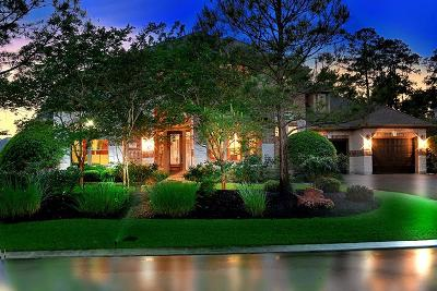 The Woodlands Single Family Home For Sale: 31 Mosaic Point Place