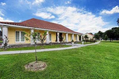 Houston Single Family Home For Sale: 11515 Foxburo Drive