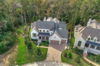 The Woodlands Single Family Home For Sale: 63 Simon Lake
