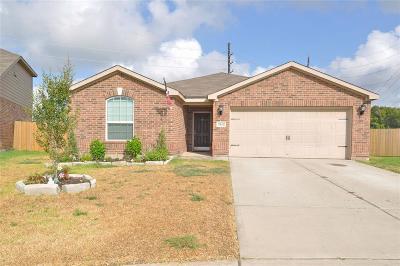 Rosenberg Single Family Home For Sale: 5102 Briar Cove Lane
